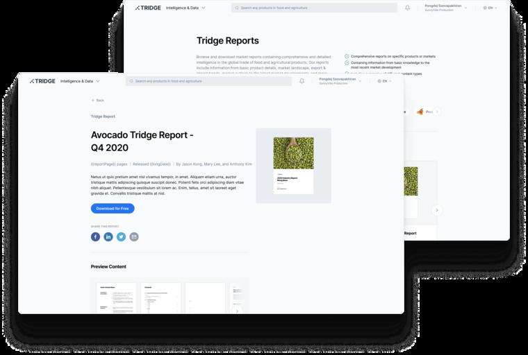 Discover Tridge Reports