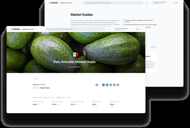 Explore Market Guides